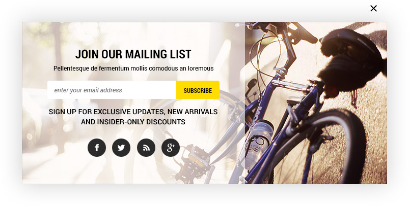 Halo Bicydos Bike Store Responsive Magento Template X Ready - Magento newsletter templates