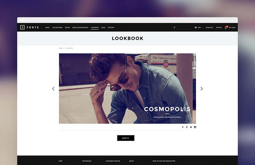 Shopify Module: LookBook