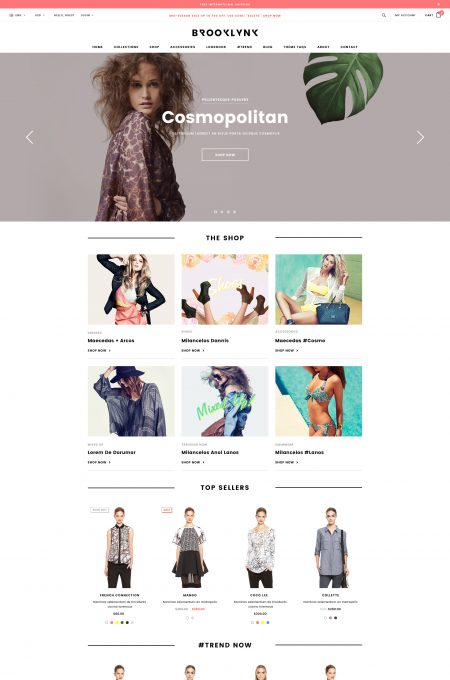Brooklynk - Responsive Fashion Shopify Template (Sections Ready)